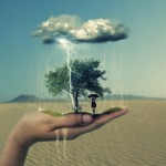 Visionkeeper ~ We Hold It All In Our Hands