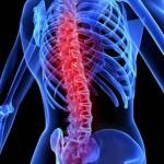 David Icke ~ How's Your Backbone? …