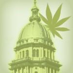 David Borden ~ Senate Judiciary Committee To Examine Marijuana Legalization