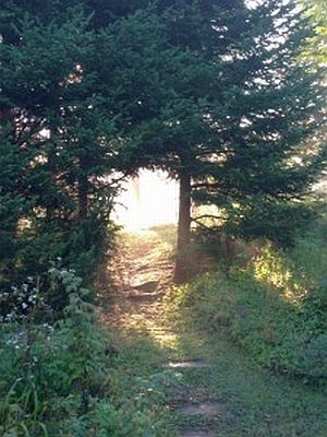 mage: Calais Cottage Pathway, photo by M Kelley Hunter