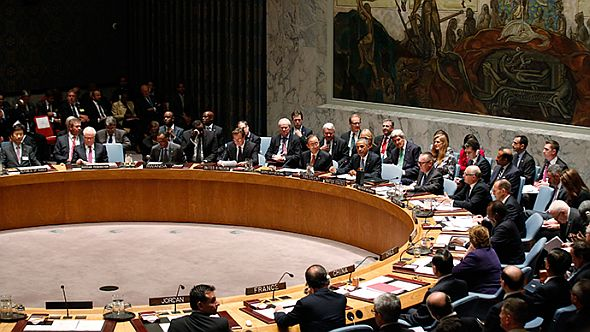 UNSecurityCouncil2014