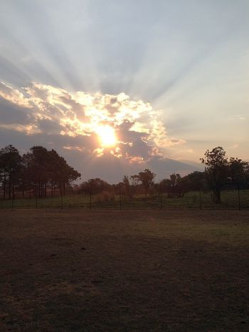 Sunset, Johannesburg, South Africa From Wise Owl Frieda