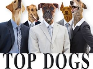 TopDogsInSuits