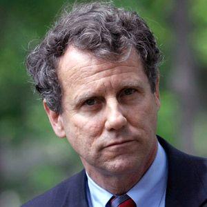 Senator Sherrod Brown Questions the New York Fed President During Senate Hearing