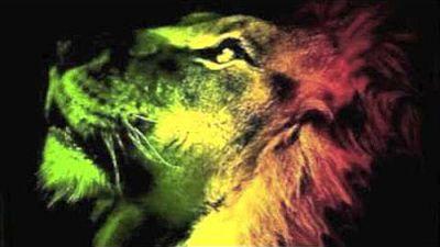 LionWarrior