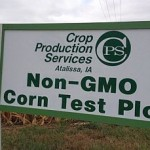 Christina Sarich ~ Record US Farmers Switching to Non-GMO Crops in 2015